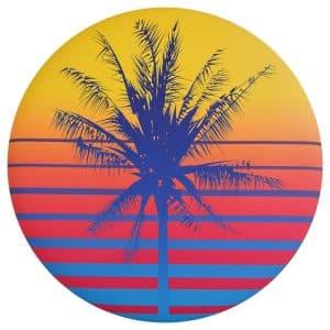 Waboba Wingman Foldable Silicone Flying Disc Retro Palm